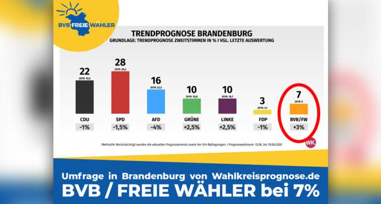BVB Freie Wähler Prognose